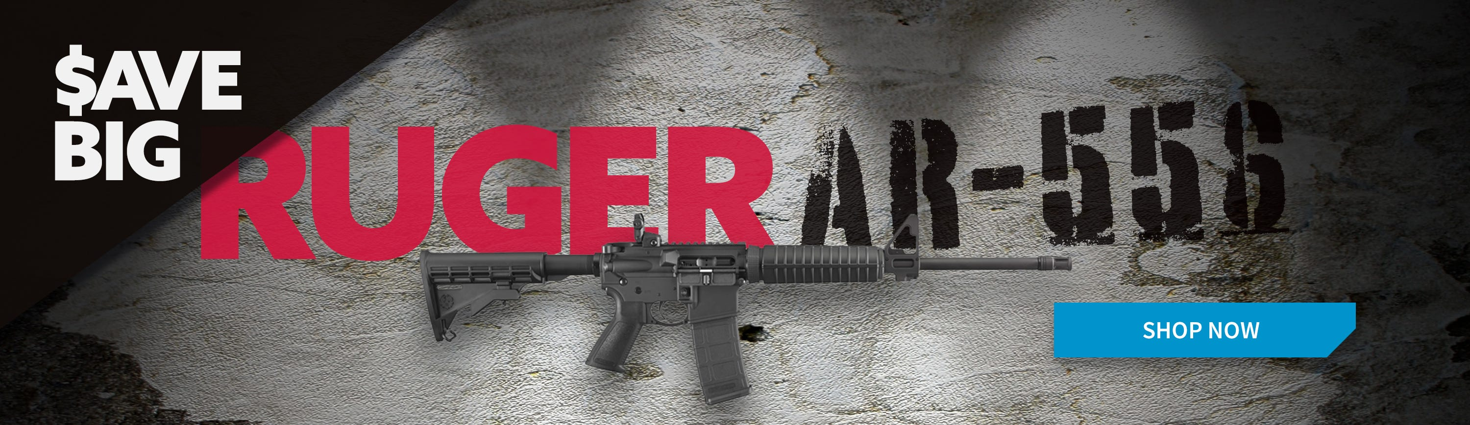 Crazy Low Price on Ruger AR-556!