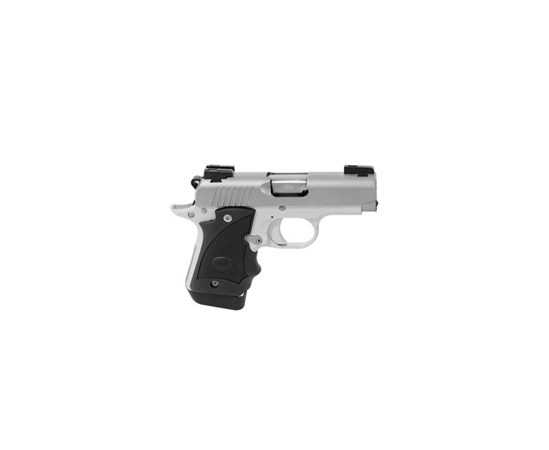 Kimber Micro 9 Stainless 9mm TruGlo TFX Pro Day / Night Sights